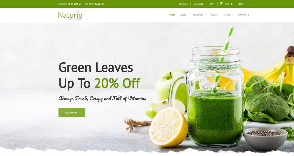 45+ Best Website Templates for Small Business in 2020 - 66344 naturio
