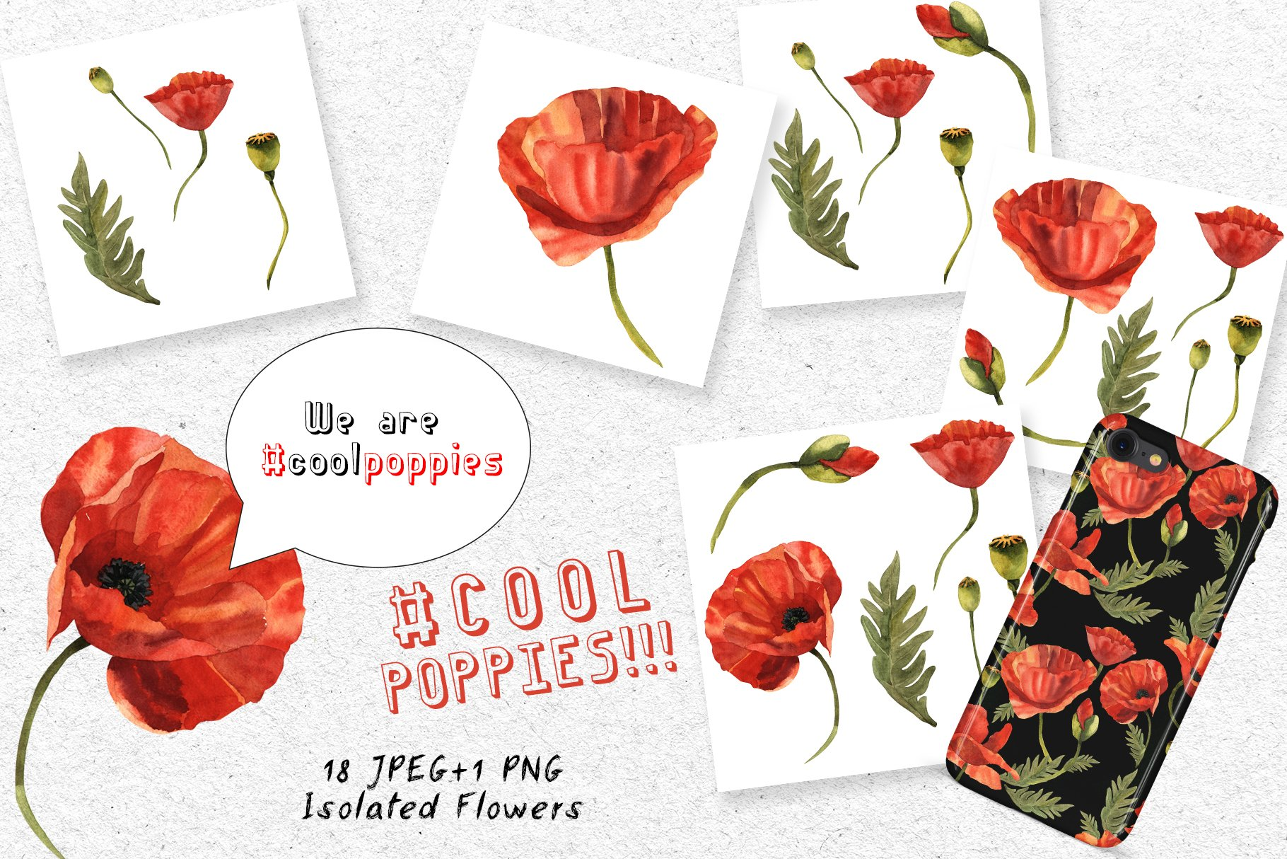 Cool Poppies PNG Watercolor Set - cover 6 1