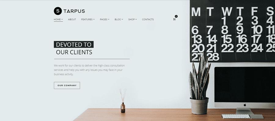 Starpus - Creative Financial Multipurpose WordPress Theme