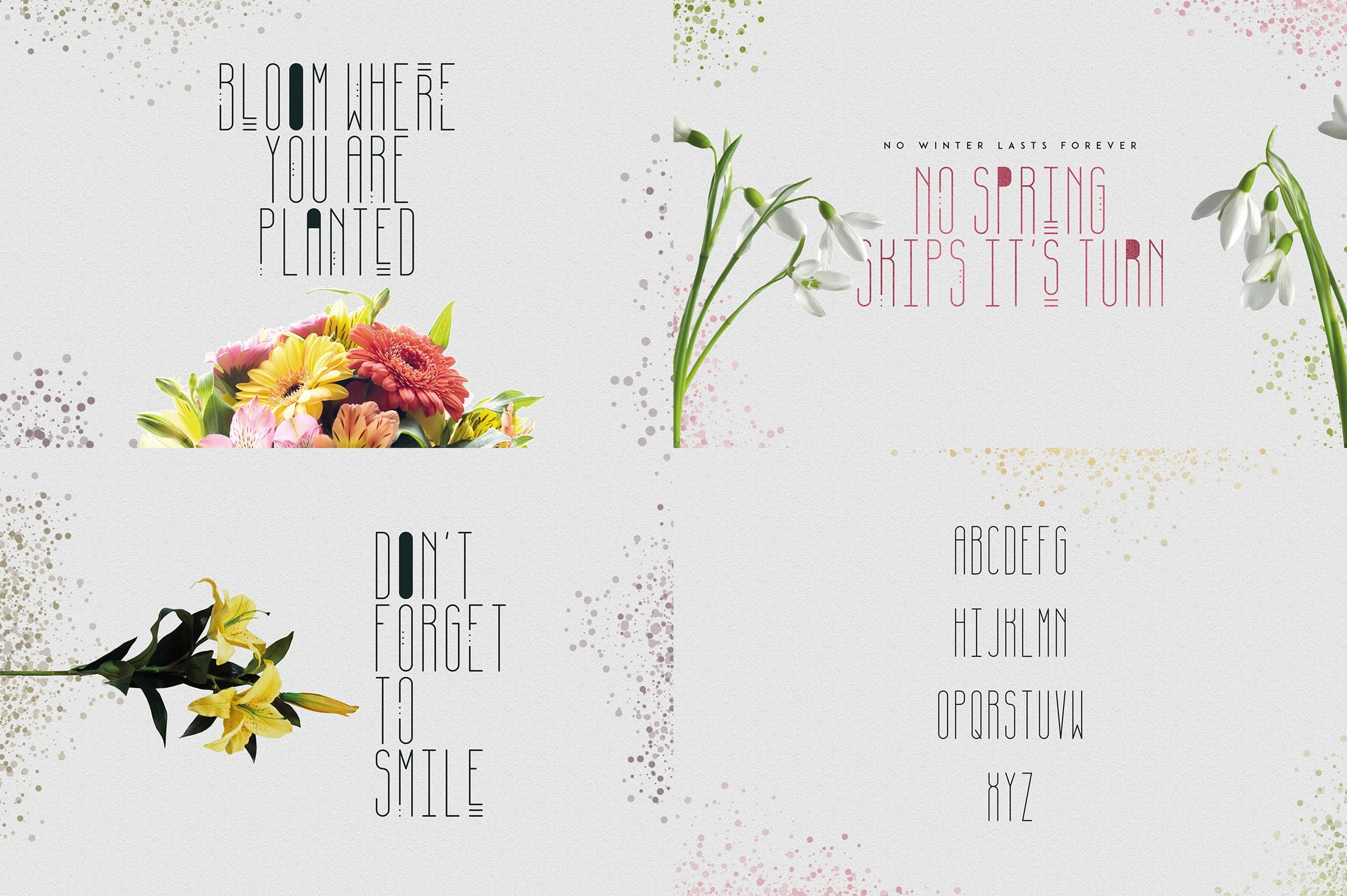 Digital Display Fonts - 85 Sans & Display Fonts Bundle - 25
