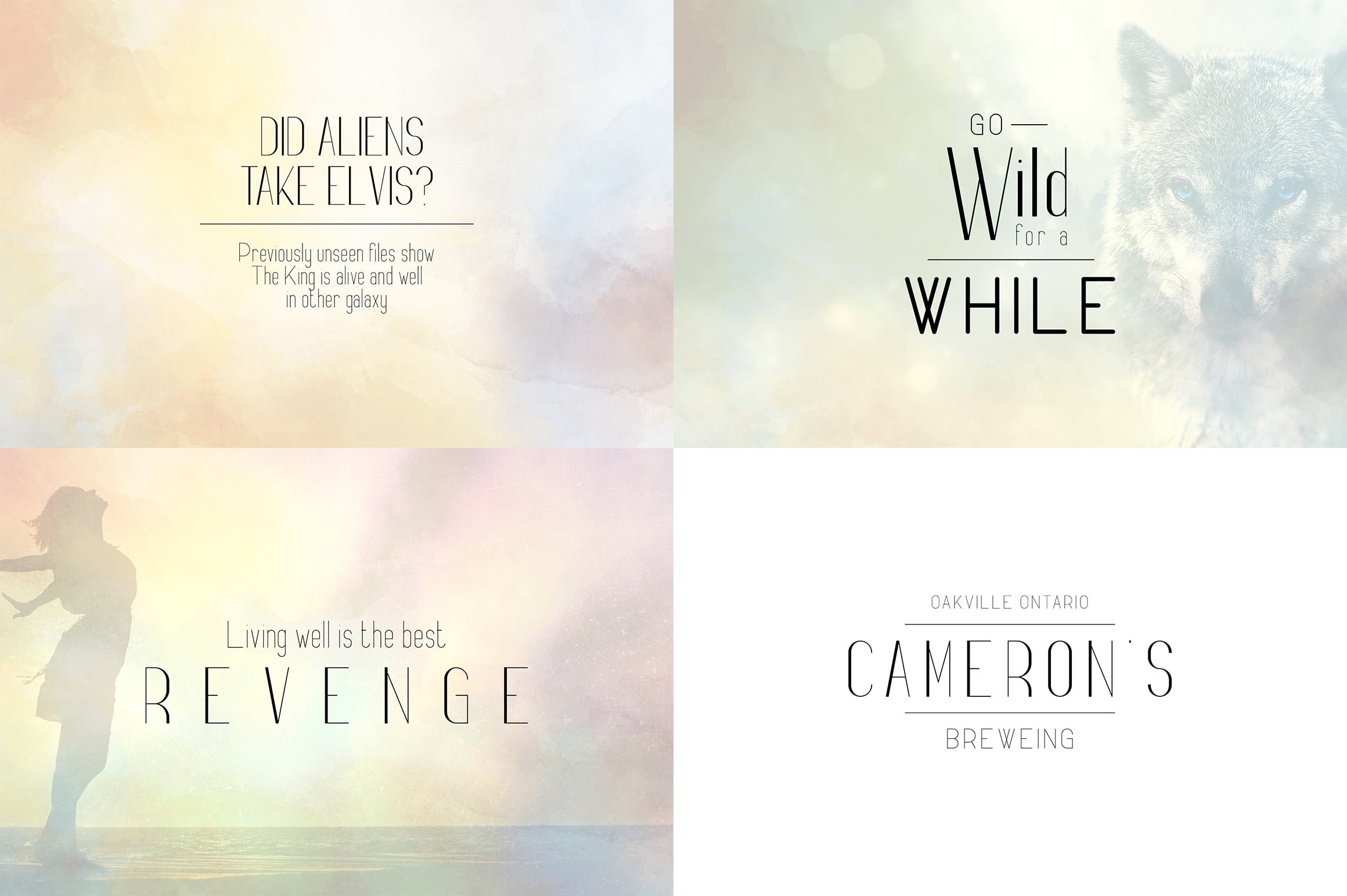 Digital Display Fonts - 85 Sans & Display Fonts Bundle - 31