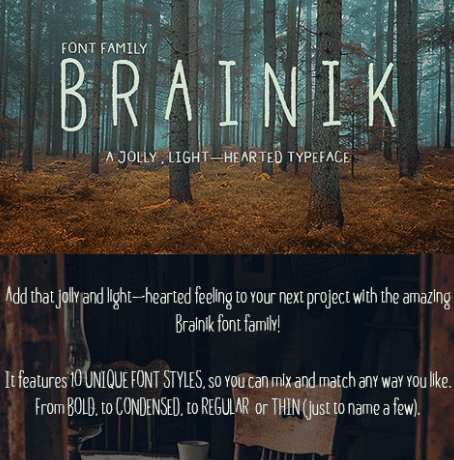 Brainik Font Family