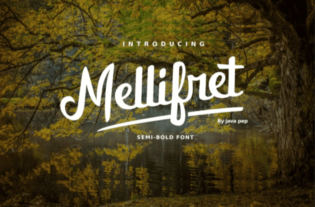 20+ Awesome Fonts for Logos and Websites - image10 2
