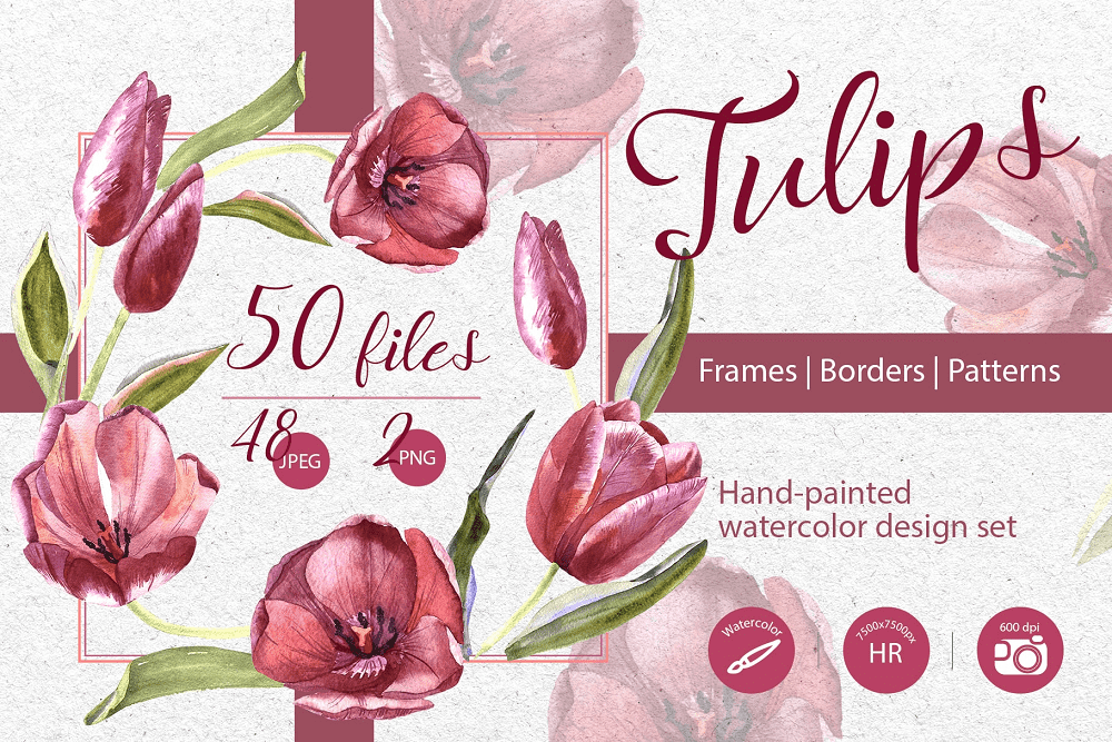Wildflower Red Tulips PNG Watercolor Set