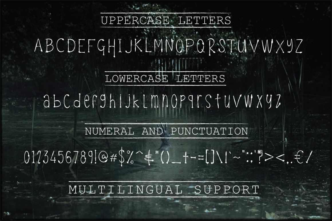 Celeste Funky Typeface - $6 - Hallo Cover 4