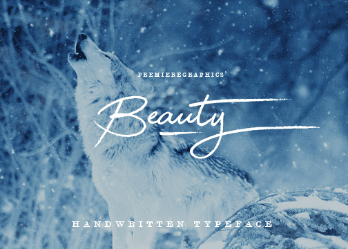 135+ Best Script Fonts in 2020. Free and Premium - beauty 2