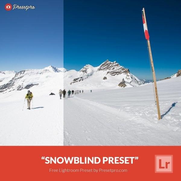 150+ Free Christmas Graphics: Fonts, Images, Vectors, Patterns & Premium Bundles - free lightroom preset snowblind