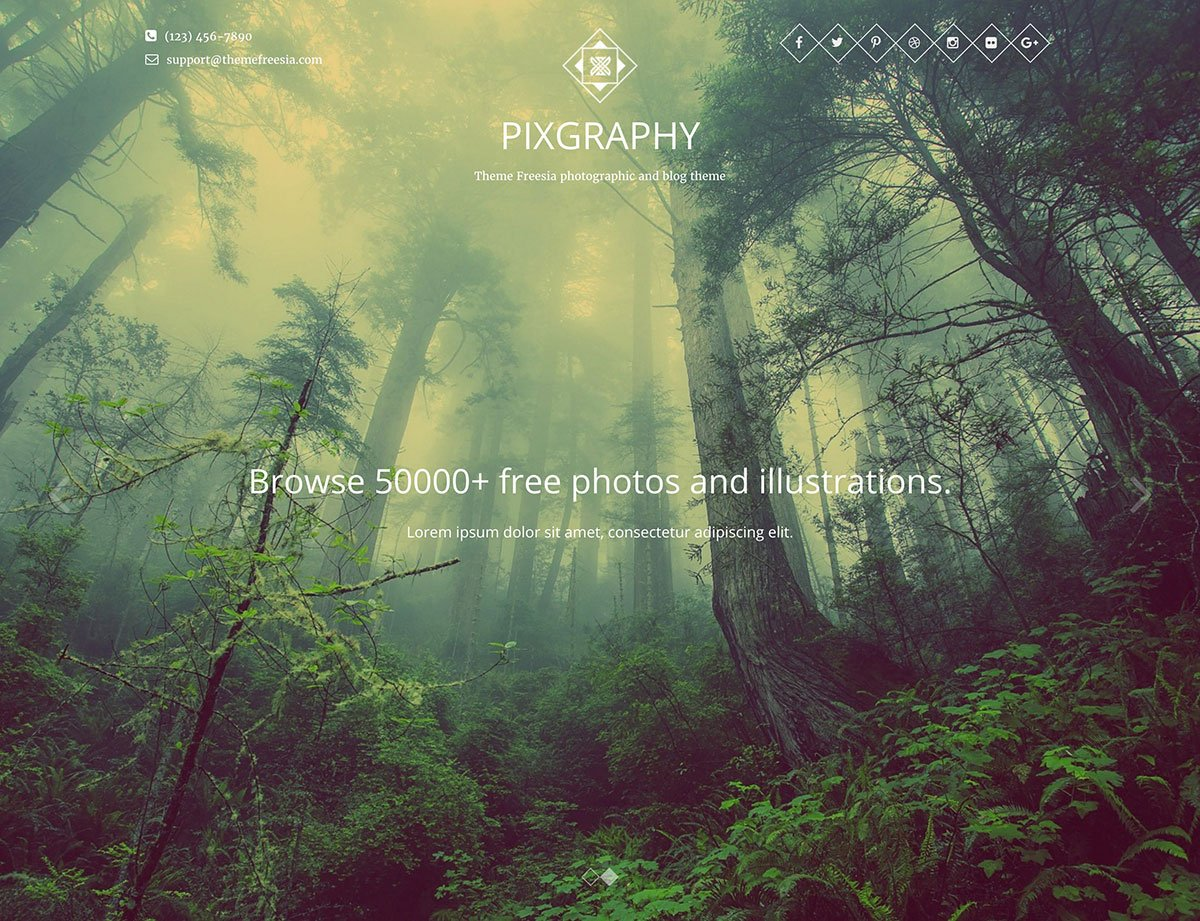 This is the fanciest themes with a simple design for talented photographers.