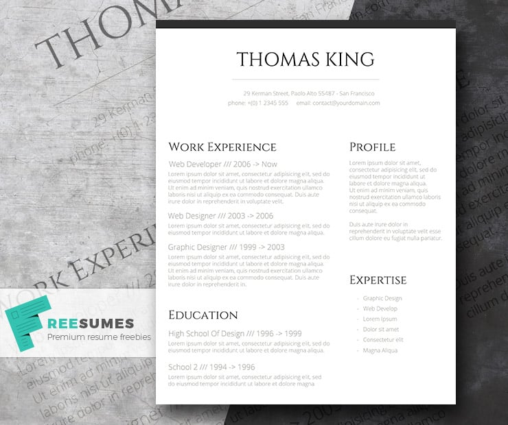 Professional Clean – A Basic But Stylish Resume Layout