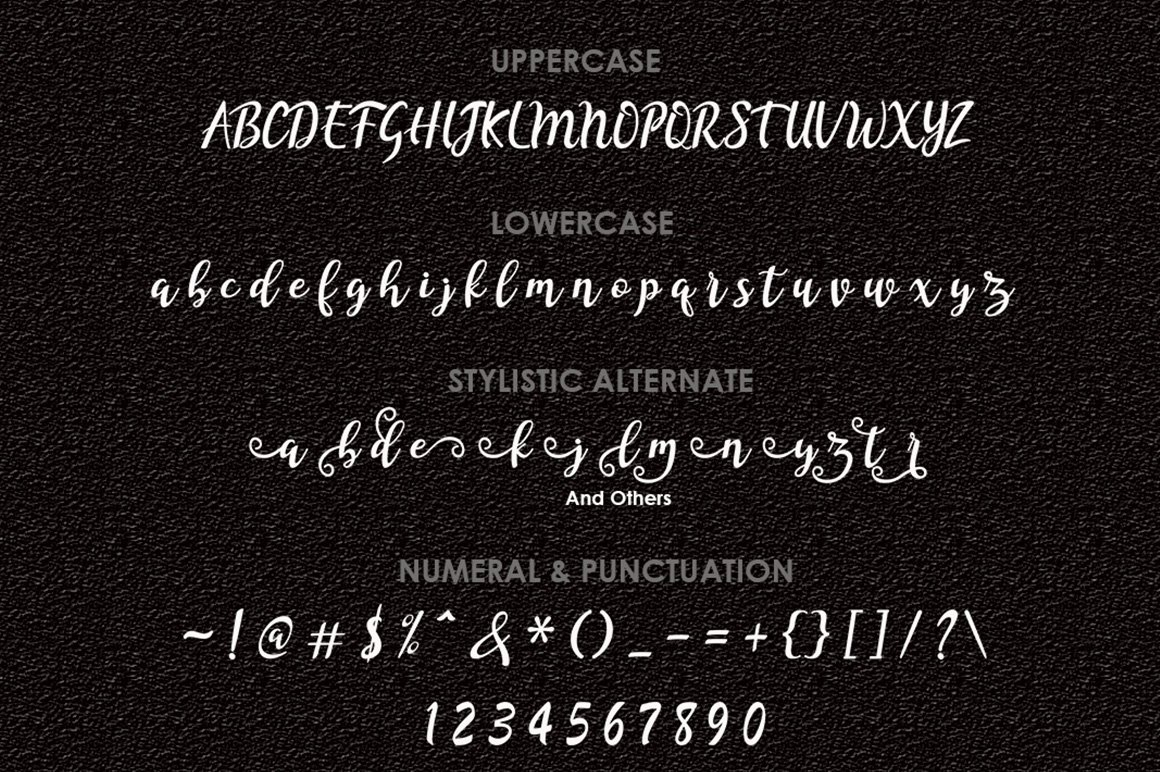 The Amazing Font Bundle - 8 Typefaces $8 only - 004