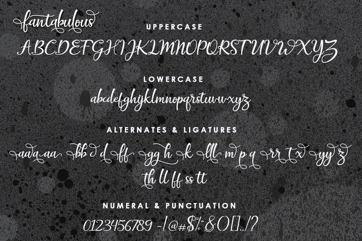 The Amazing Font Bundle - 8 Typefaces $8 only - 05 1
