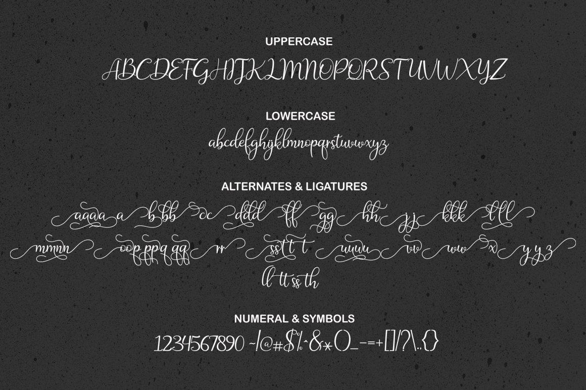 The Amazing Font Bundle - 8 Typefaces $8 only - 8