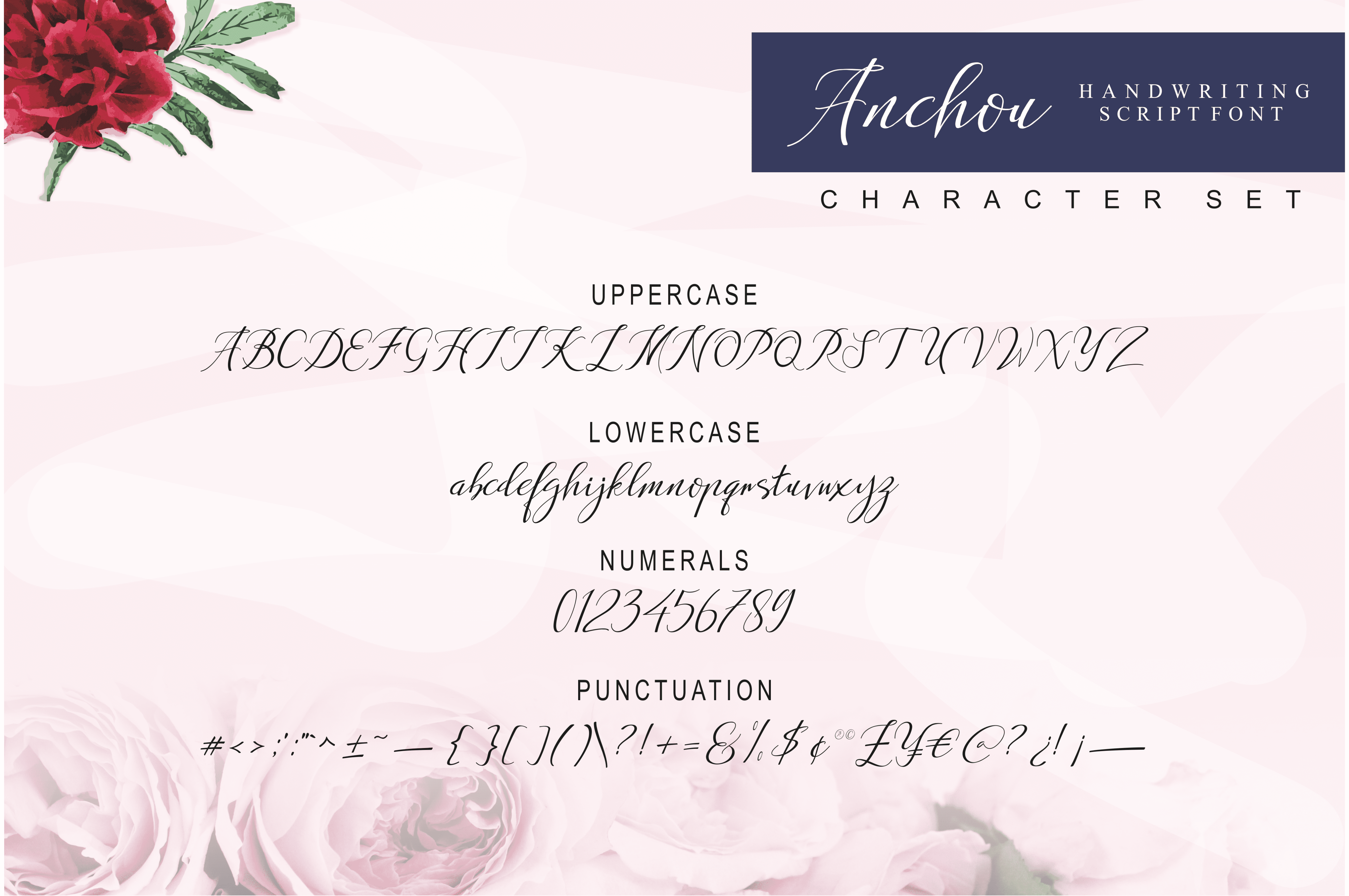 Anchou Beautiful Handwriting Font - $2 - View8