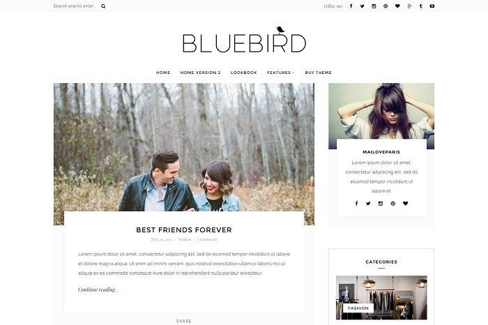 Bluebird - WordPress blog theme