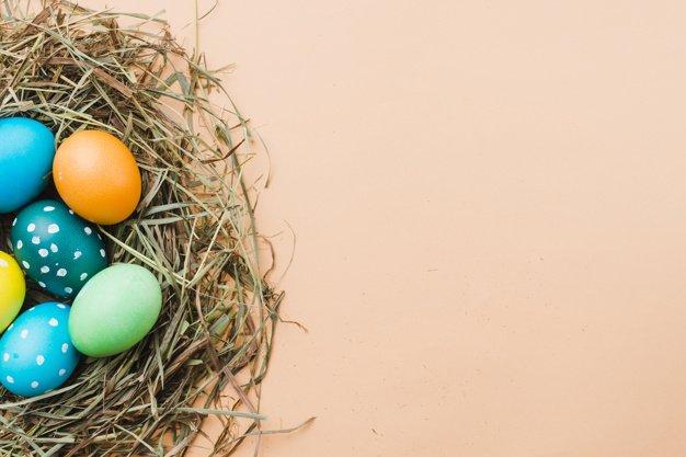 220 Best Easter Graphics in 2020: Free & Premium - set bright easter eggs nest 23 2148038349