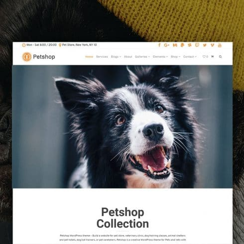 Author - Pets Site Builder Petshop WordPress Theme 490x490