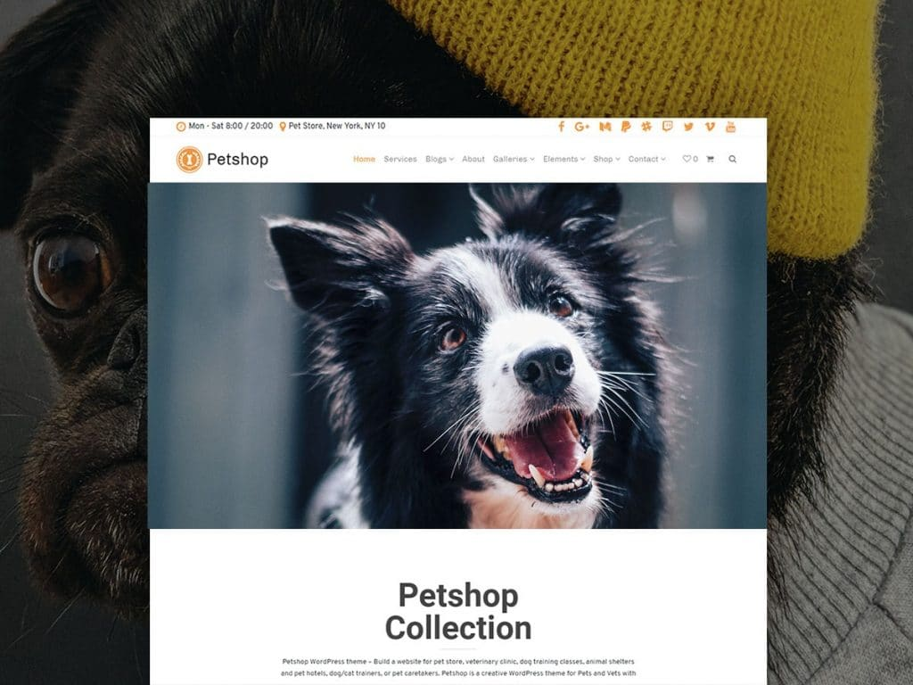 Petshop WordPress Theme + Free Hosting - Pets Site Builder Petshop WordPress Theme