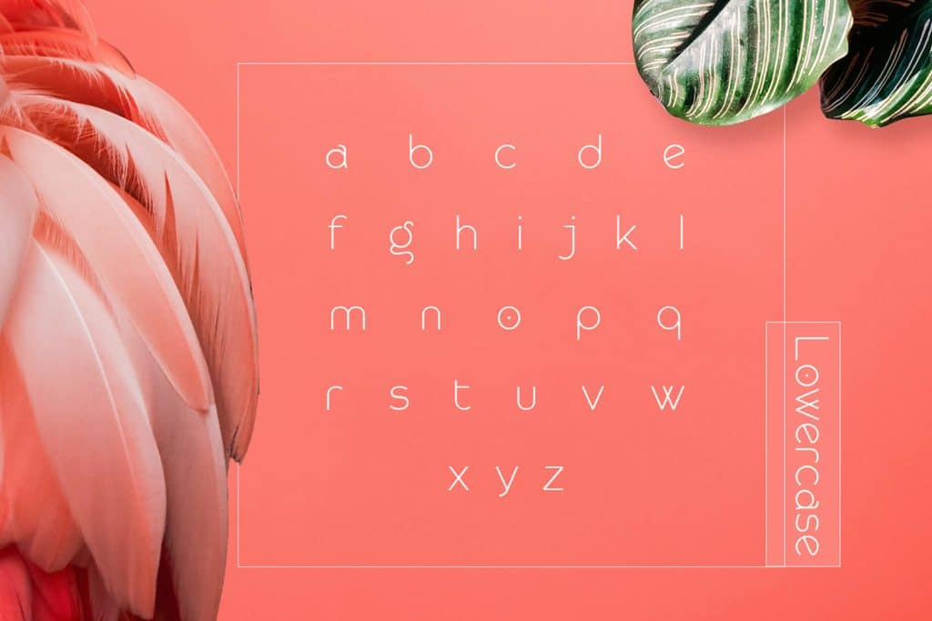 Modern Sans Serif Font - Rollgates - $15 - 3