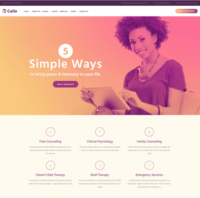 100+ Best Minimal WordPress Themes for Begginers in 2020. Free and Premium [Updated] - Screenshot 8