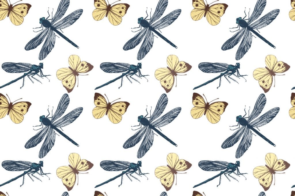 Insects and Seamless Patterns