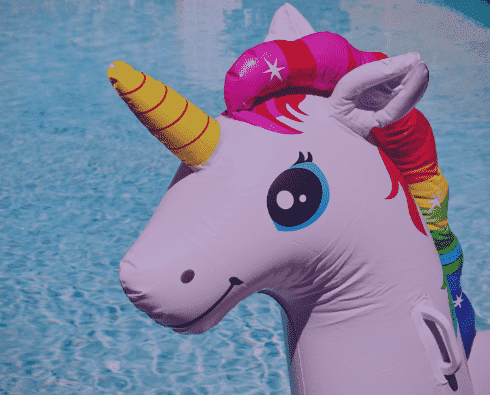 45+ Best Unicorn Clipart Elements in 2021: For those who Believe in Miracles