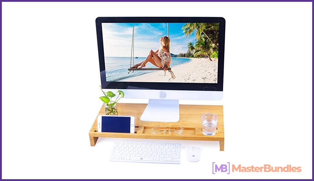 Monitor Stand Riser Computer Laptop Desk with Desktop Storage Organizer