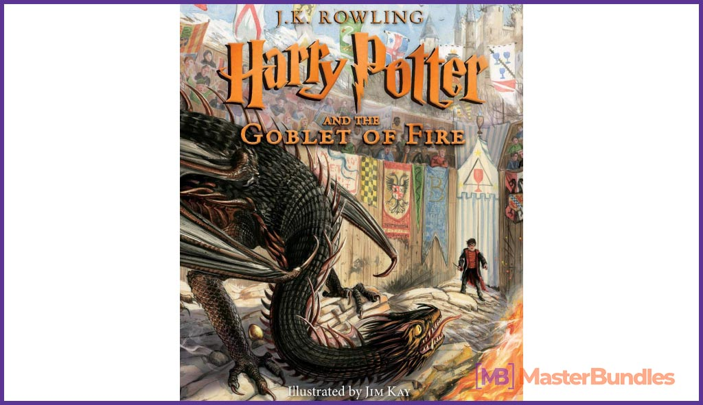 Harry Potter and the Goblet of Fire: The Illustrated Edition. Birthday Gift Ideas for Graphic Designer.