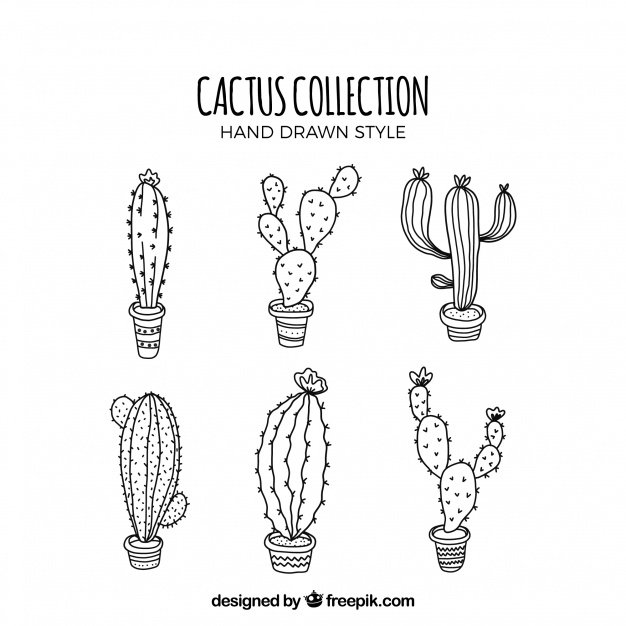 Modern Set Sketchy Cactus. Cactus clipart.