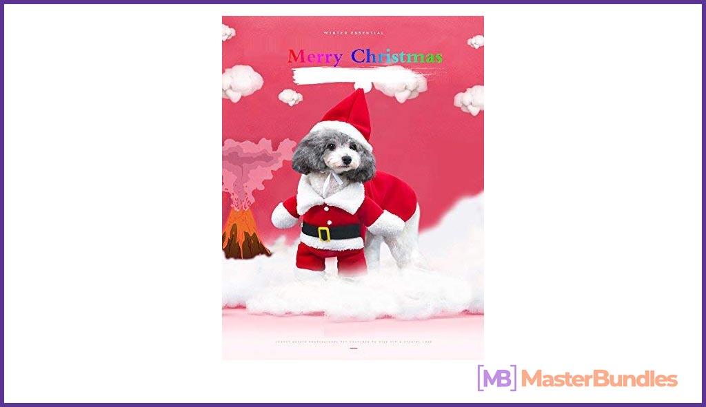 Christmas Costumes Cat Santa