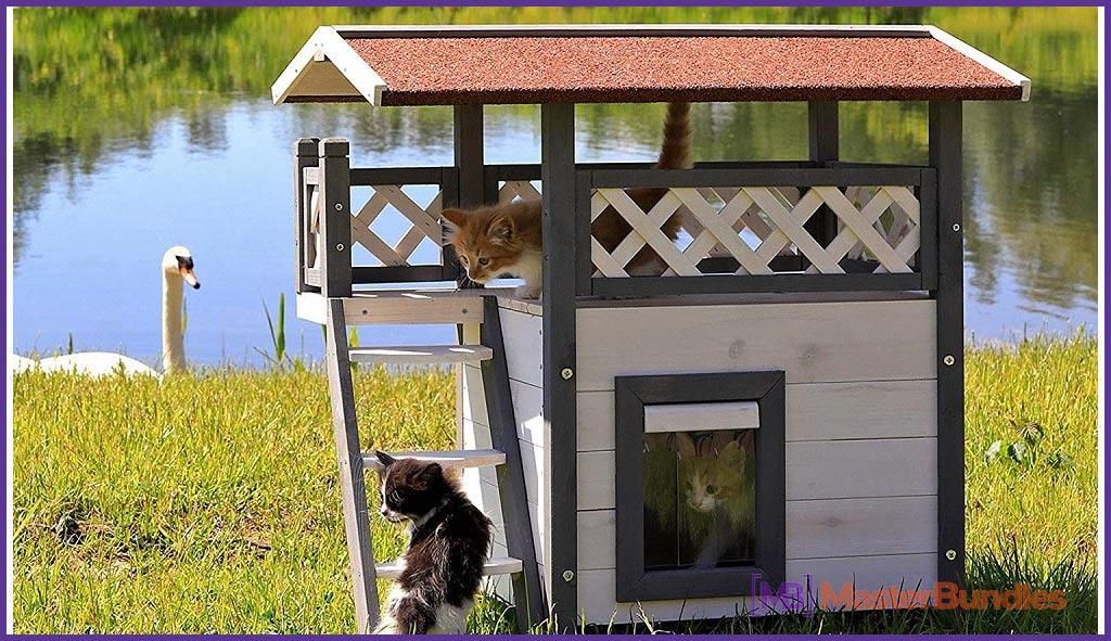 Dibea Lodge Cat House