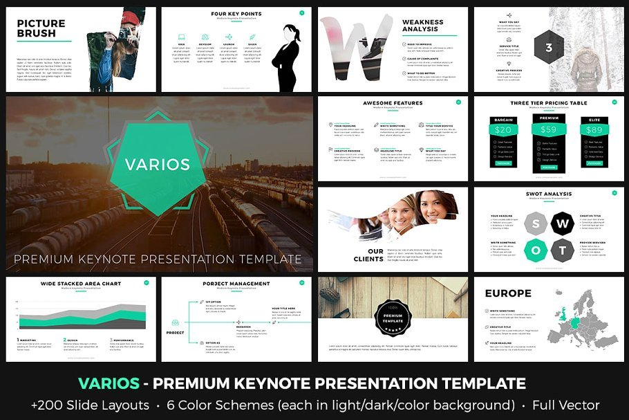 35+ Best PowerPoint Presentation Templates 2020: Free and Paid - image16