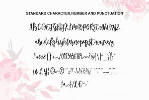 Morable Modern Hand Based Typeface - $10
