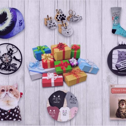 Best 77+ Gifts for Cat Lovers & Cat Moms in 2021. Things That Make Cats and Cat Lovers Happy