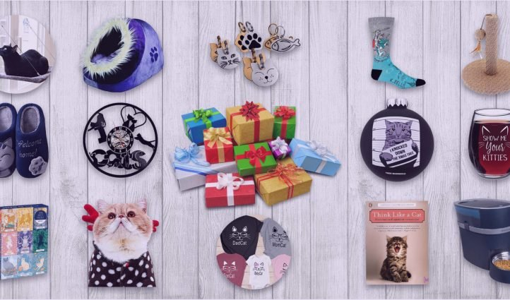 Best Gifts for Cat Lovers And Cat Moms.