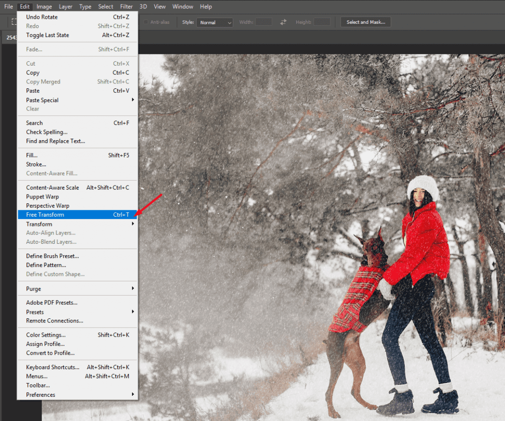 100 Winter Backgrounds: Prepare Your Designs for the Winter Season - image14