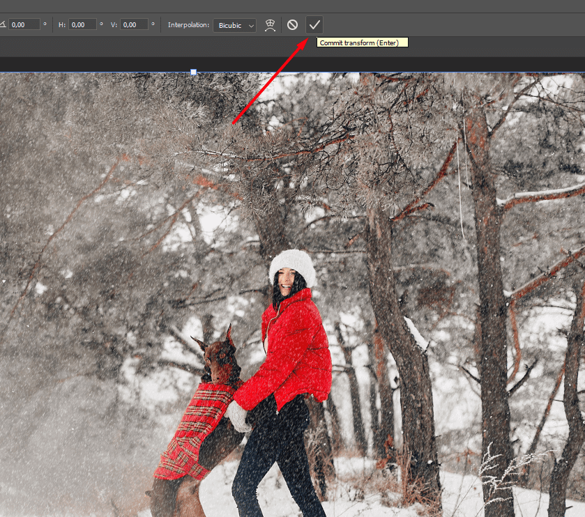 100 Winter Backgrounds: Prepare Your Designs for the Winter Season - image3 1