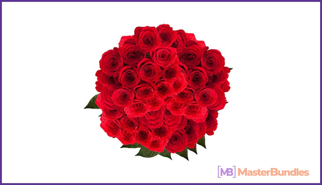 GlobalRose Red Roses. Valentine's Day Gifts for a Writer.