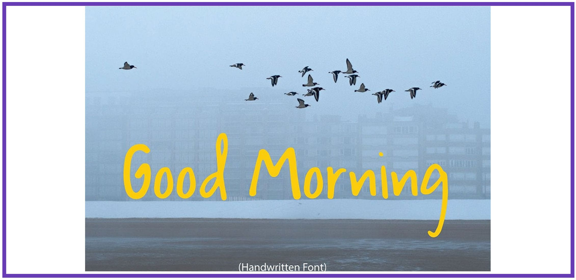 A flock of birds in a foggy sky with a script fun font.
