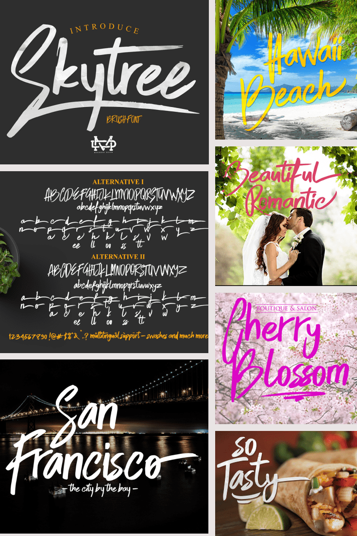 Collage of beach, wedding, city and menu with a script fun font.