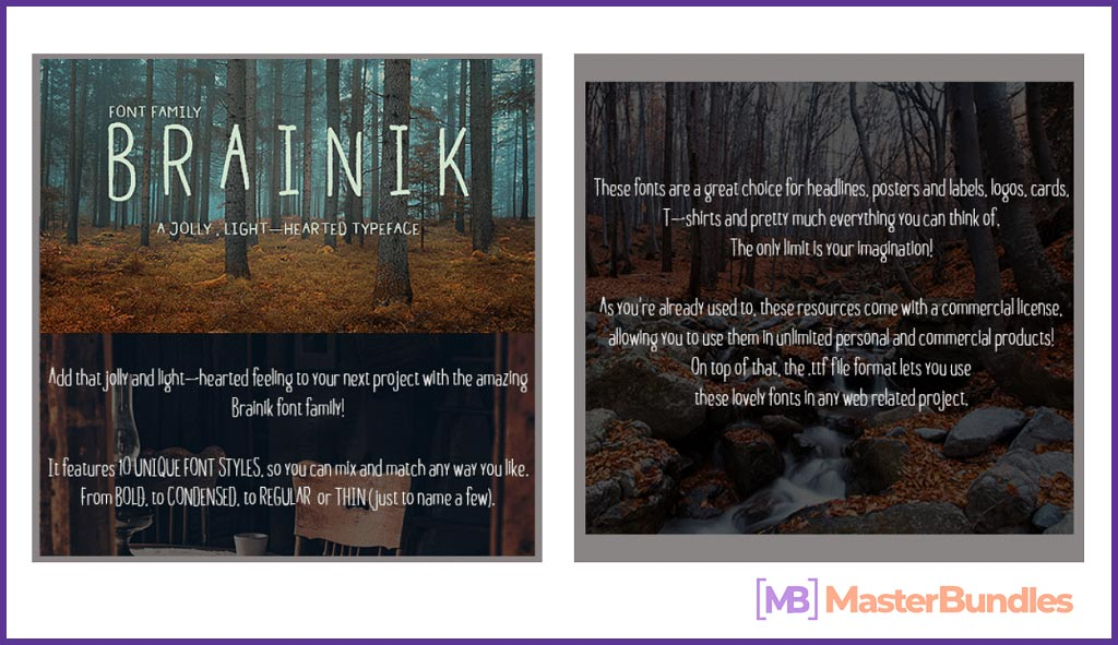Brainik Font Family: a Typeface You'll Love