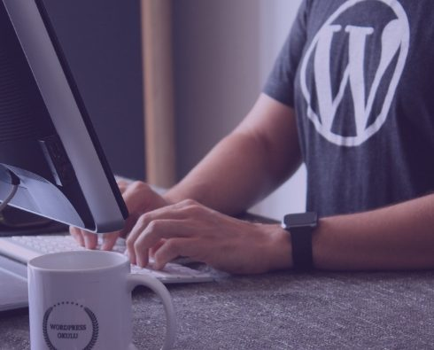 100+ Best Minimal WordPress Themes for Begginers in 2021. Free and Premium [Updated]