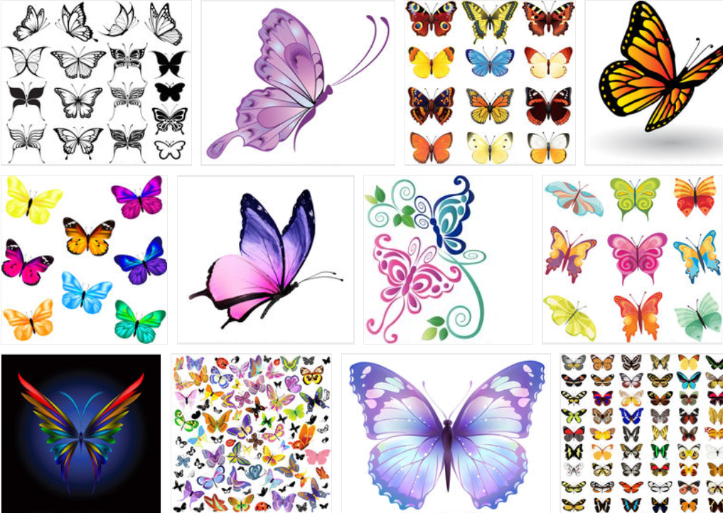 Best Butterfly Clipart 2021: What and Where to Search for? - image1