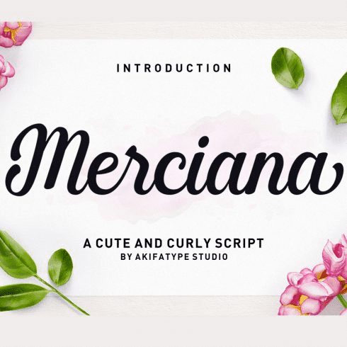 95+ Best Hand Lettering Fonts (Premium and Free) To Type the Most Important Words - image38 1