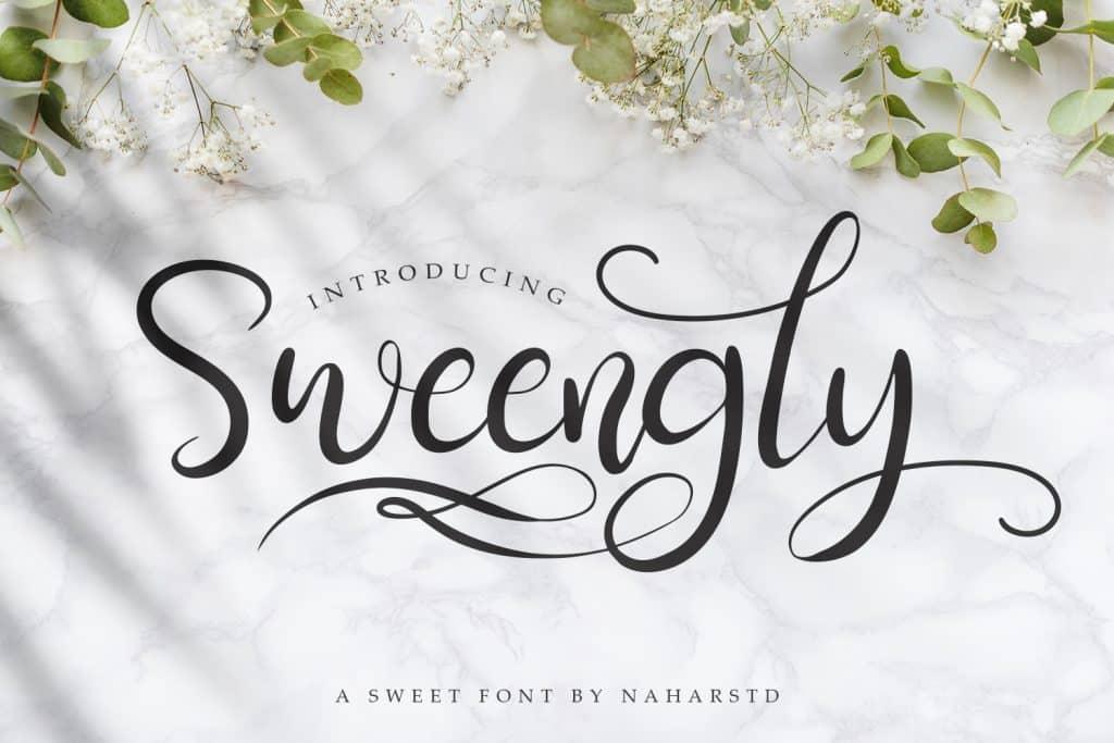 Sweengly - Modern Script Font $12