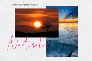 Best Deals | Signature Typeface - View4 300x200