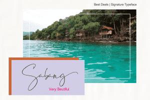 Best Deals | Signature Typeface - View6 300x200