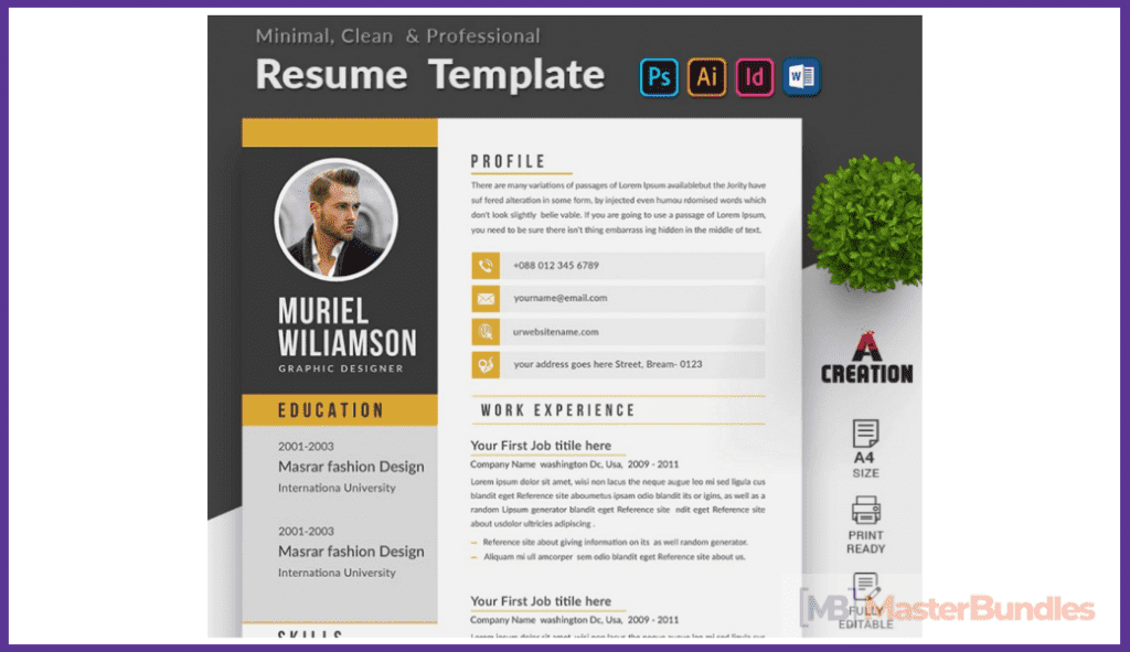 44+ Best Computer Science Resume Templates: Free and Premium - best computer science resume templates 15
