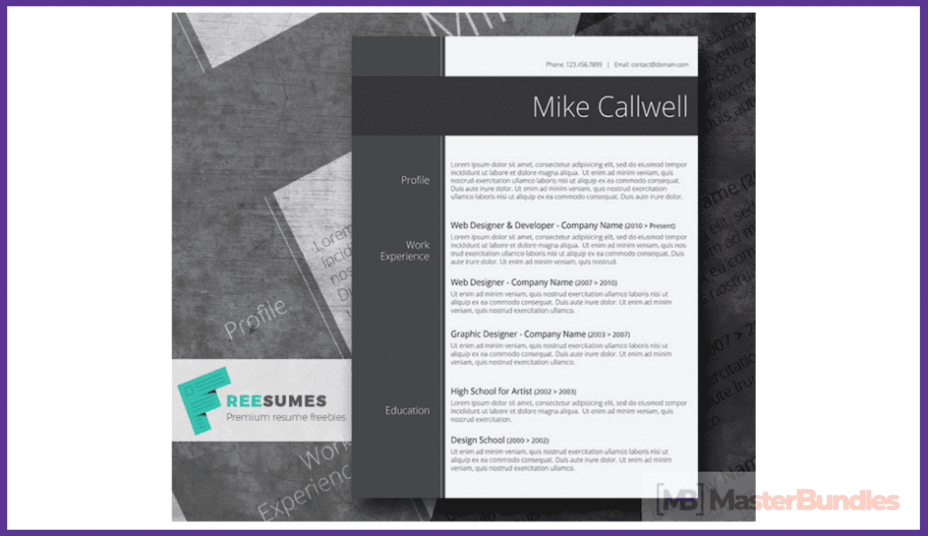 44+ Best Computer Science Resume Templates: Free and Premium - best computer science resume templates 24