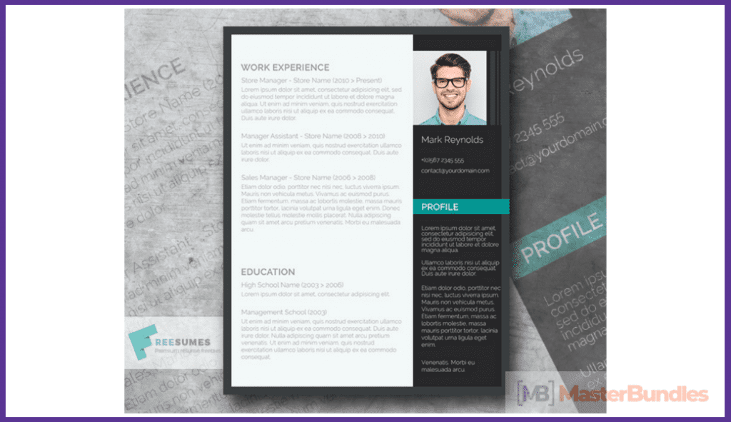 44+ Best Computer Science Resume Templates: Free and Premium - best computer science resume templates 26