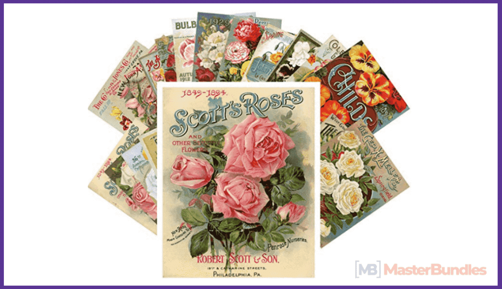 Postcard Set 24 cards Flowers Vintage Seed Pockets Gardens and Roses.